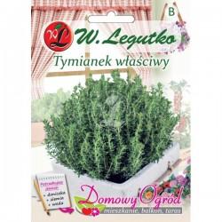 Tymianek właściwy Domowy Ogród nasiona ziół Legutko