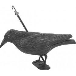Kruk siedzący, odstraszacz ptaków, rozmiar natural